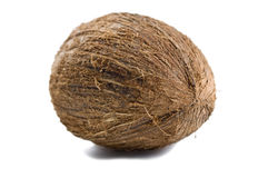 Une noix de coco Photos stock