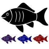 Une nuance saumonée pour la boutique de poissons Photo stock