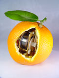 Une orange de rouage d'horloge Photo libre de droits