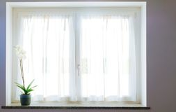 Une orchidée blanche sur un filon-couche de fenêtre au coucher du soleil photos libres de droits