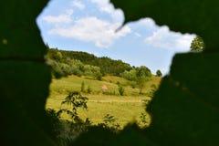 Une ouverture sur la feuille, un ciel bleu et une colline Images stock
