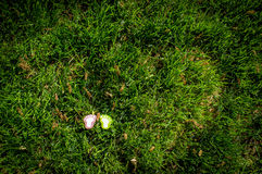 Une paire d'empreintes de pas modèle sur l'herbe 3 Images stock