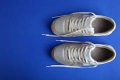 Une paire d'espadrilles argentées Photo libre de droits