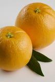 Une paire d'oranges se ferme vers le haut photographie stock libre de droits