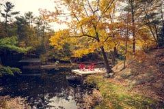 Une paire de chaises rouges sur un dock de cottage photographie stock