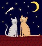 Une paire de chats de maison se repose sur le toit pendant la nuit étoilée Photos stock