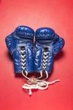 Une paire de gants bleus Photo libre de droits
