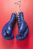 Une paire de gants bleus Images stock