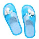 Pantoufles bleues domestiques Photos libres de droits