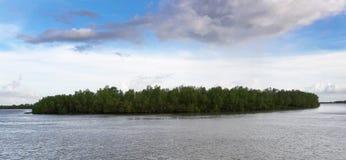 Une part du Sundarbans image libre de droits