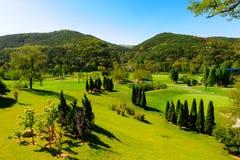 Une pelouse large Photo libre de droits