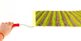 Une personne peignant un paysage d'un champ de maïs sur un mur blanc avec une brosse de rouleau Photos stock
