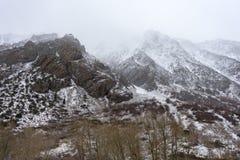 Une personne solitaire brave l'hiver dans le SierraThe Sierra Nevada tient demi couvert dans la neige pendant l'hiver photos stock
