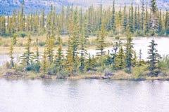 Une petite île au milieu d'un lac Photographie stock