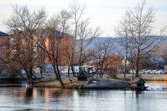Une petite île dans un étang dans le soleil de matin à l'hiver image libre de droits