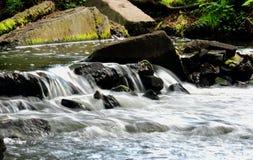 Une petite cascade dans la forêt Photo stock