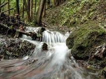Une petite cascade dans la forêt Photographie stock libre de droits