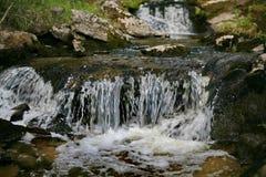 Une petite cascade de taiga Forest River secteur Bois?-montagneux Foyer brouill? L'Extr?me Orient, Sakhaline image stock
