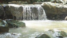 Une petite cascade et un courant des roches débordantes de l'eau banque de vidéos