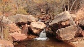Une petite cascade sur le souterrain gauche de fourchette en parc de Zion National verse au-dessus des rochers de grès banque de vidéos