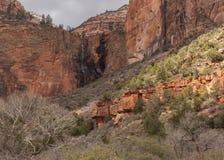 Une petite correction des lumières de soleil la pente de la colline dans la cour des patriarches en parc national Utah de Zion photographie stock