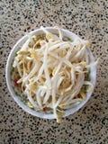 Une petite cuvette de beansprout Images libres de droits