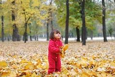 Une petite fille dans des feuilles jaunes photo stock