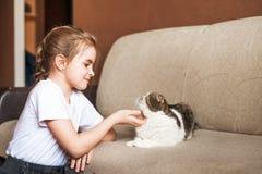 Une petite fille dans un T-shirt blanc et un beau chat britannique de shorthair Jeux sans Internet, réseaux sociaux, instruments Photo stock