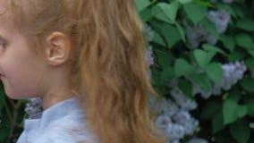 Une petite fille dehors en parc ou jardin tient les fleurs lilas Buissons lilas ? l'arri?re-plan ?t?, parc banque de vidéos