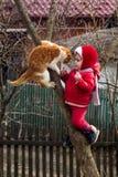 Une petite fille en rouge s'est habillée sur un arbre dans le jardin, avec un chat de minerai images stock