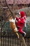 Une petite fille en rouge s'est habillée sur un arbre dans le jardin, avec un chat de minerai photos libres de droits