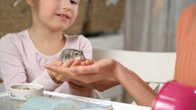 Une petite fille et sa maman jouent avec un hamster minuscule banque de vidéos