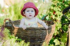 Une petite fille mignonne s'assied sur un foin dans un panier dans le jardin Image libre de droits
