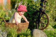 Une petite fille mignonne s'assied sur un foin dans un panier dans le jardin Images stock