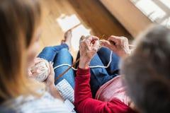Une petite-fille pluse âgé méconnaissable de grand-mère et d'adulte à la maison, tricotant Photo libre de droits