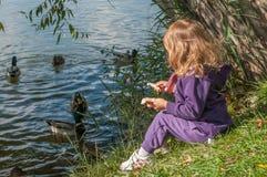 Une petite fille s'asseyant sur des canards d'un côté et d'alimentation de lac Image stock
