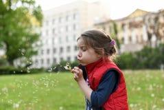 Une petite fille soufflant sur une fleur de pissenlit sur une rue de ville Images libres de droits