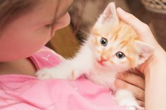 Une petite fille tient un chaton dans ses bras et étreintes Photo stock
