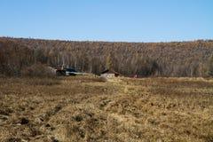 Une petite maison dans la forêt Photo stock