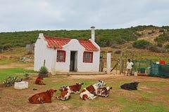 Une petite maison rouge sur les périphéries d'Uitenhage Images libres de droits