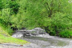 Une petite rivière de montagne dans les Carpathiens Photos libres de droits