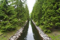Une petite voie d'eau avec des arbres coniféres et un pont Image stock