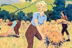 Une photo d'une scène de vintage d'une récolte et des moyettes d'attachement Images stock