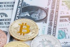 Une pièce de monnaie mordue est placée sur le fond de billets de banque pour des affaires image stock