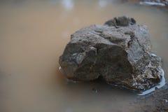 Une pierre dans le bassin isolé Photos libres de droits