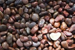 Une pierre en forme de coeur blanche dedans en bas à droite de cadre Image stock
