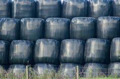 Une pile de balles de foin Photo libre de droits