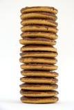 Une pile de biscuits Photos libres de droits