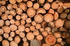 Une pile de bois de chauffage devant une grange, Alpes Tyrol Autriche Photos libres de droits
