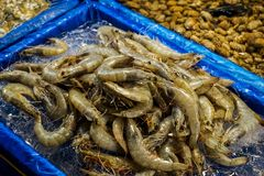 Une pile de crevette photos libres de droits